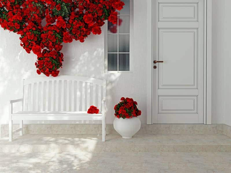 Roses in a white vase can do wonders to increase the curb appeal through the use of container gardening.