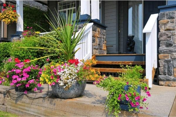 Beautiful flowers in pots on a porch will increase the curb appeal of your home and increase its value.